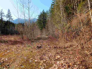 Photo 18: 21902 UNION BAR Road in Hope: Hope Kawkawa Lake Land for sale : MLS®# R2467753