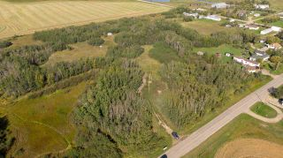 Photo 6: 55328 RRG 265: Rural Sturgeon County Rural Land/Vacant Lot for sale : MLS®# E4138970