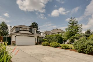 Photo 24: 21578 THORNTON Avenue in Maple Ridge: West Central House for sale : MLS®# V964691