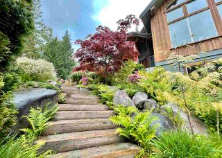 Photo 34: 12238 269 Street in Maple Ridge: Northeast House for sale : MLS®# R2583508