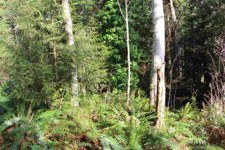 Photo 3: 5852 MARINE Way in Sechelt: Sechelt District Land for sale (Sunshine Coast)  : MLS®# R2545877