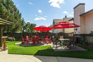 Photo 23: 9831 185 Street in Edmonton: Zone 20 House for sale : MLS®# E4262793