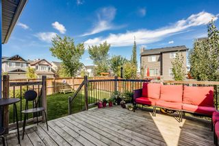 Photo 24: 4 Copperstone Landing SE in Calgary: Copperfield Detached for sale : MLS®# A1147039