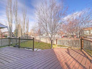Photo 39: 99 BERNARD Court NW in Calgary: Beddington Heights Detached for sale : MLS®# C4215187