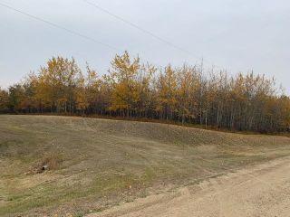 Main Photo: 39 Hillsborough Crescent: Rural Sturgeon County Rural Land/Vacant Lot for sale : MLS®# E4265557
