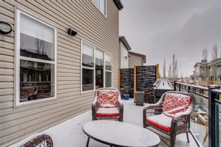 Photo 40: 9 Copperfield Point SE in Calgary: Copperfield Detached for sale : MLS®# A1100718