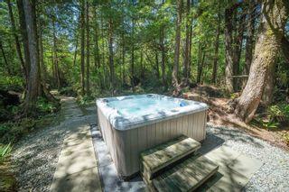Photo 45: 1321 Pacific Rim Hwy in Tofino: PA Tofino House for sale (Port Alberni)  : MLS®# 878890