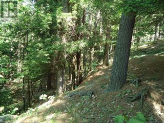 Photo 23: 400 MARY LAKE (GRYFFIN BLUFFS LANE) Lane in Port Sydney: Vacant Land for sale : MLS®# 40126538