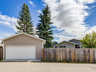 Photo 49: 44 MAITLAND Green NE in Calgary: Marlborough Park Detached for sale : MLS®# A1030134
