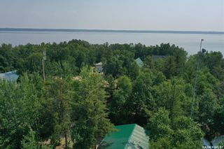 Photo 42: 203 Birch Drive in Torch River: Residential for sale (Torch River Rm No. 488)  : MLS®# SK863589