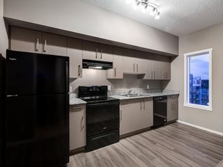 Photo 15: 1611 4641 128 Avenue NE in Calgary: Skyview Ranch Apartment for sale : MLS®# A1029088