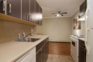 """Photo 3: 109 357 E 2ND Street in North Vancouver: Lower Lonsdale Condo for sale in """"Thornecliffe"""" : MLS®# R2009279"""