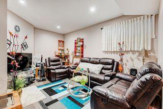 Photo 45: 102 Saddlelake Way NE in Calgary: Saddle Ridge Detached for sale : MLS®# A1092455