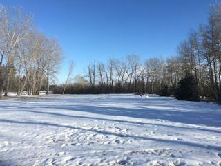 Photo 7: Township 32: Rural Mountain View County Residential Land for sale : MLS®# A1064686