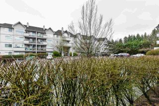 "Photo 23: 114 33708 KING Road in Abbotsford: Poplar Condo for sale in ""College Park"" : MLS®# R2535903"