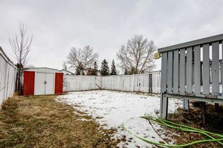 Photo 26: 64 Whitmire Road NE in Calgary: Whitehorn Detached for sale : MLS®# A1055737