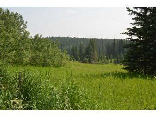 Photo 13: 51053 TWP RD 283 in : Rural Rocky View MD Residential Detached Single Family for sale : MLS®# C3627190