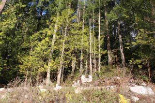 "Photo 18: LOT D 5680 CARMEL Place in Sechelt: Sechelt District Land for sale in ""TUWANEK"" (Sunshine Coast)  : MLS®# R2524461"