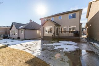 Photo 44: 117 PANATELLA Green NW in Calgary: Panorama Hills Detached for sale : MLS®# A1080965