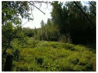 Photo 4: SW COR TWP RD 534 & RR 222: Rural Strathcona County Rural Land/Vacant Lot for sale : MLS®# E4251108