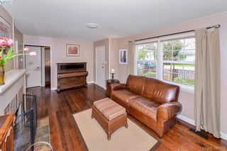 Photo 10: 1559 Bay St in VICTORIA: Vi Fernwood House for sale (Victoria)  : MLS®# 784514