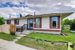 Photo 42: 217 Templemont Drive NE in Calgary: Temple Semi Detached for sale : MLS®# A1120693