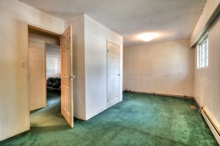 Photo 34: 20838 117th Avenue in MAPLE RIDGE: Home for sale