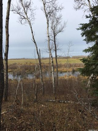 Photo 7: Acreage-Adjacent to South Bay-Turtle Lake in Turtle Lake: Lot/Land for sale : MLS®# SK858441