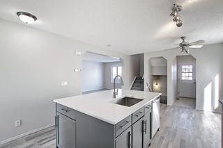 Photo 4: 253 Elgin Way SE in Calgary: McKenzie Towne Detached for sale : MLS®# A1087799