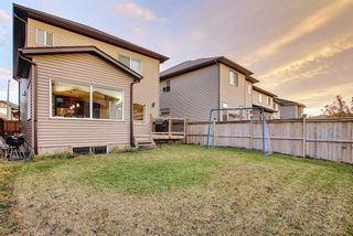 Photo 47: 1100 Brightoncrest Green SE in Calgary: New Brighton Detached for sale : MLS®# A1060195