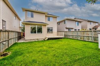 Photo 46: 303 Chapalina Terrace SE in Calgary: Chaparral Detached for sale : MLS®# A1113297