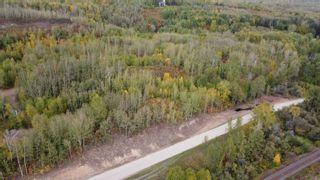 Photo 14: Hwy 11 & RR 53: Rural Parkland County Rural Land/Vacant Lot for sale : MLS®# E4265869