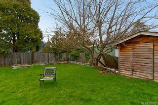 Photo 18: 1216 Oxford St in : Vi Fairfield West House for sale (Victoria)  : MLS®# 563521