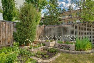 Photo 42: 3204 15 Street NW in Calgary: Collingwood Detached for sale : MLS®# A1124134