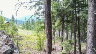 Photo 14: Lot B THOMPSON ROAD in Bonnington: Vacant Land for sale : MLS®# 2459440