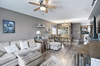 Photo 5: 367 Maitland Crescent NE in Calgary: Marlborough Park Detached for sale : MLS®# A1093291