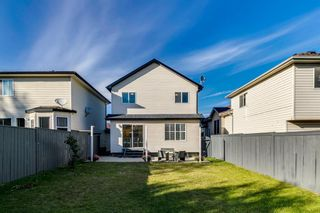 Photo 30: 11 Bridlewood Gardens SW in Calgary: Bridlewood Detached for sale : MLS®# A1149617