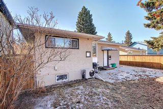 Photo 43: 56 Langton Drive SW in Calgary: North Glenmore Park Detached for sale : MLS®# A1081940