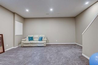 Photo 29: 22 Cranford Common SE in Calgary: Cranston Detached for sale : MLS®# A1087607