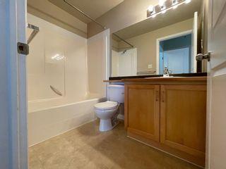 Photo 21: 533 11325 83 Street in Edmonton: Zone 05 Condo for sale : MLS®# E4256939