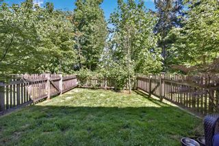 """Photo 30: 31 14838 61 Avenue in Surrey: Sullivan Station Townhouse for sale in """"Sequoia"""" : MLS®# R2588030"""