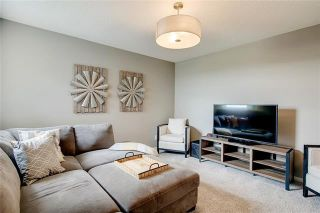 Photo 23: 393 MASTERS Avenue SE in Calgary: Mahogany Detached for sale : MLS®# C4302572