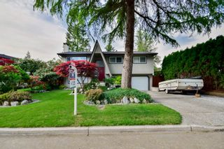 Photo 4: 20801 MCFARLANE Avenue in Maple Ridge: Southwest Maple Ridge House for sale : MLS®# R2065058