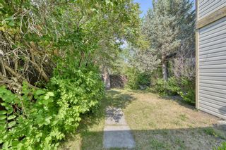 Photo 42: 240 Scenic Way NW in Calgary: Scenic Acres Detached for sale : MLS®# A1125995