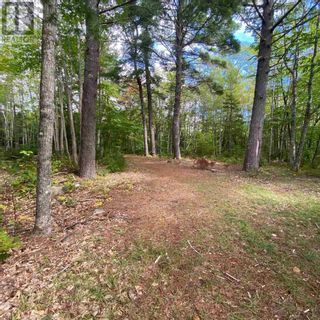 Photo 13: 317 Forest Point Loop in Labelle: Vacant Land for sale : MLS®# 202124977
