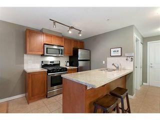 Photo 5: 409 2636 HASTINGS Street E in Vancouver East: Renfrew VE Home for sale ()  : MLS®# V1046609