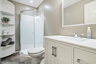 Photo 25: 744 PRESTWICK Circle SE in Calgary: McKenzie Towne Detached for sale : MLS®# A1024986