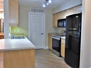 Photo 9: 225 13111 140 Avenue in Edmonton: Zone 27 Condo for sale : MLS®# E4225870