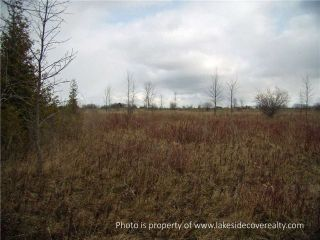 Photo 5: 2489 Concession Road 3 Road in Ramara: Brechin Property for sale : MLS®# X3371303