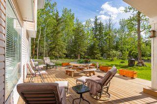 Photo 44: 15 GIBBONSLEA Drive: Rural Sturgeon County House for sale : MLS®# E4247219